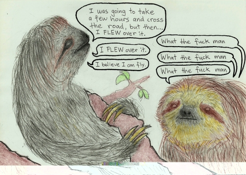 A tale of two sloths